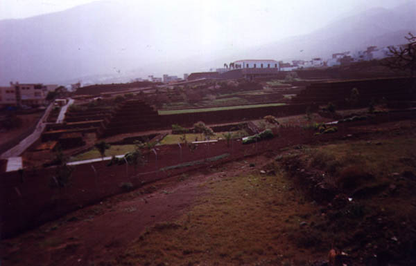 Piràmides de Gûimar: 3